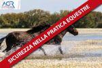 Corso di Formazione aggiuntiva equestre di base ai fini della sicurezza nella pratica equestre