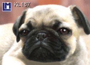 KL187