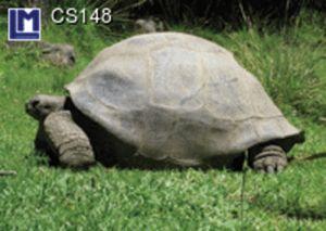 CS148