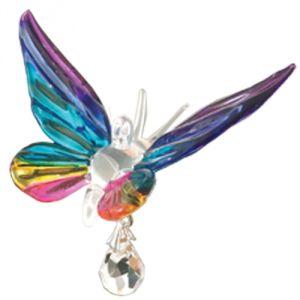 Farfalla arcobaleno