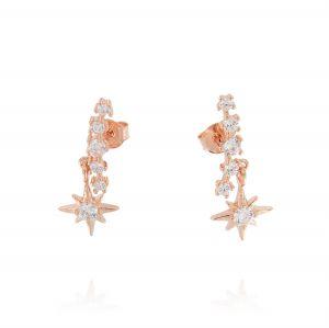 Orecchini con stella polare e zirconi bianchi - placcato rosé